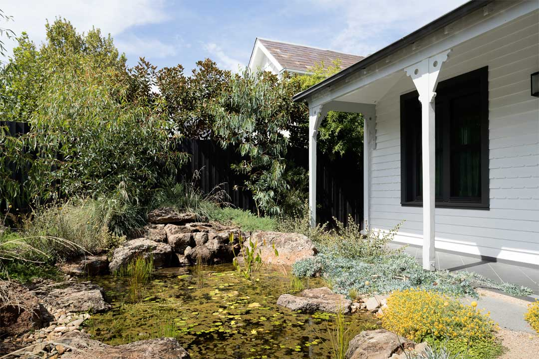 passive butterfly passiv haus passive house billabong